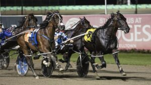 Lochinvar Art is racing the clock to gain a Miracle Mile start. Photo: Laura Lebedeff