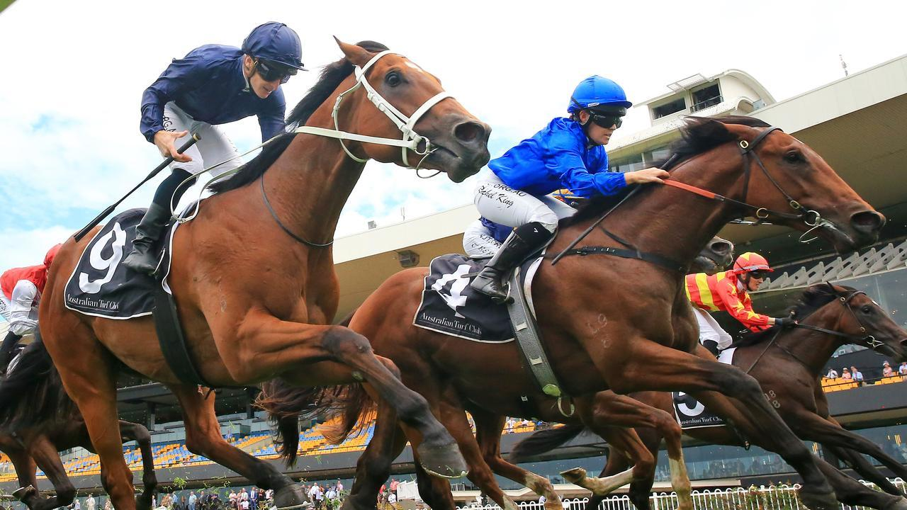 Home Affairs (navy) can highlight his Golden Slipper credentials this Saturday. Photo: Mark Evans/Getty Images