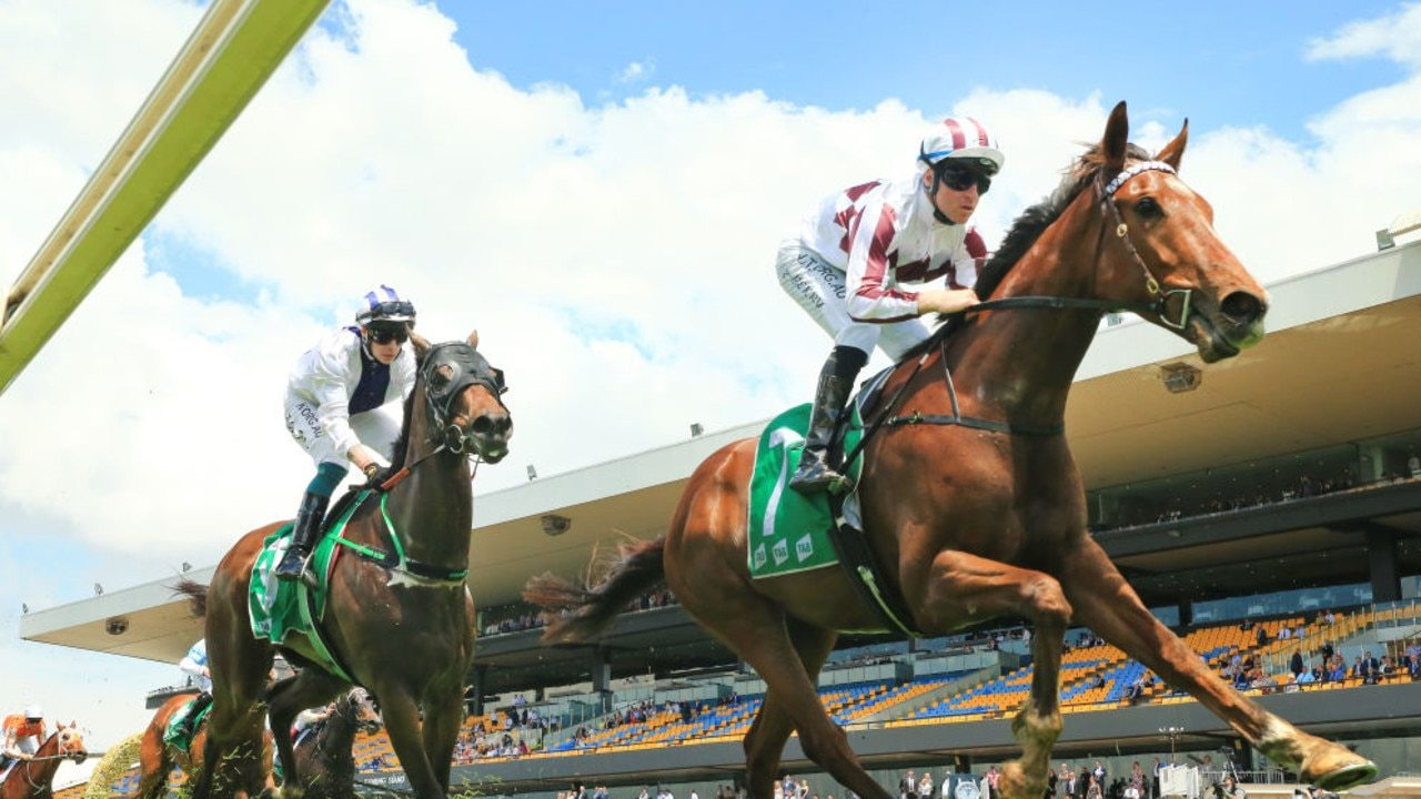 Art Cadeau is the hot favourite for the SERA Country Championships Qualifier. (Photo by Mark Evans/Getty Images)