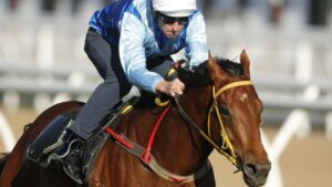 Farnan won his first autumn trial on Tuesday. Picture: Mark Evans/Getty Images