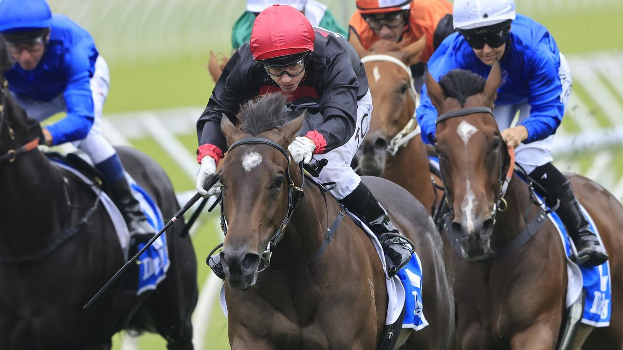 Tilianam will be given her chance to make the Golden Slipper field. Picture: Mark Evans/Getty Images