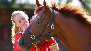 The Golden Slipper winner Capitalist is thriving at stud. Picture: Cameron Richardson