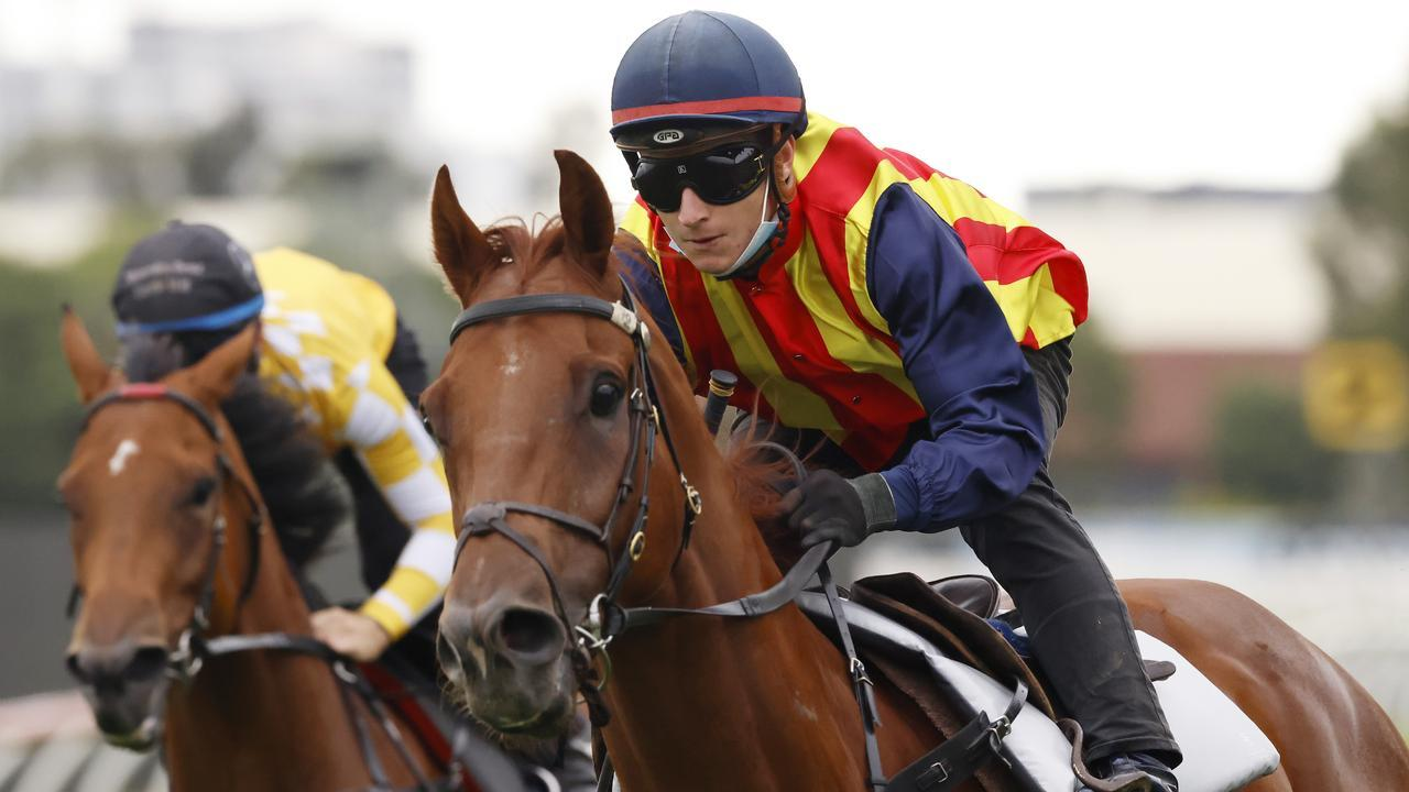 James McDonald rode Nature Strip to victory in a trial at Rosehill last Wednesday. Picture: Getty Images