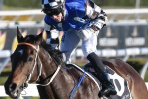 Expecting these colors to be first home in the Wauchope Cup