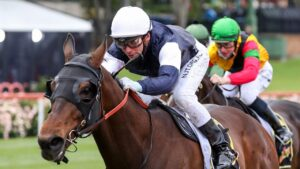 Homesman winning the Group 2 Crystal Mile at The Valley on Cox Plate day last year. Picture: George Salpigtidis