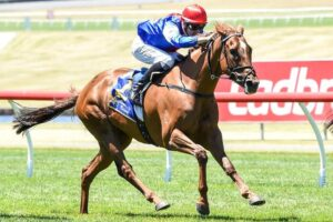 Mosh Music was back to her best at Sandown and she's got more to come.