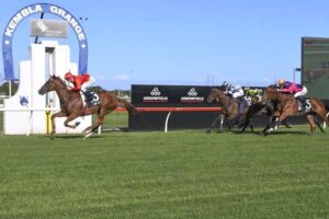 The wide open spaces at Kembla should suit a John Sargent-trained two-year-old.