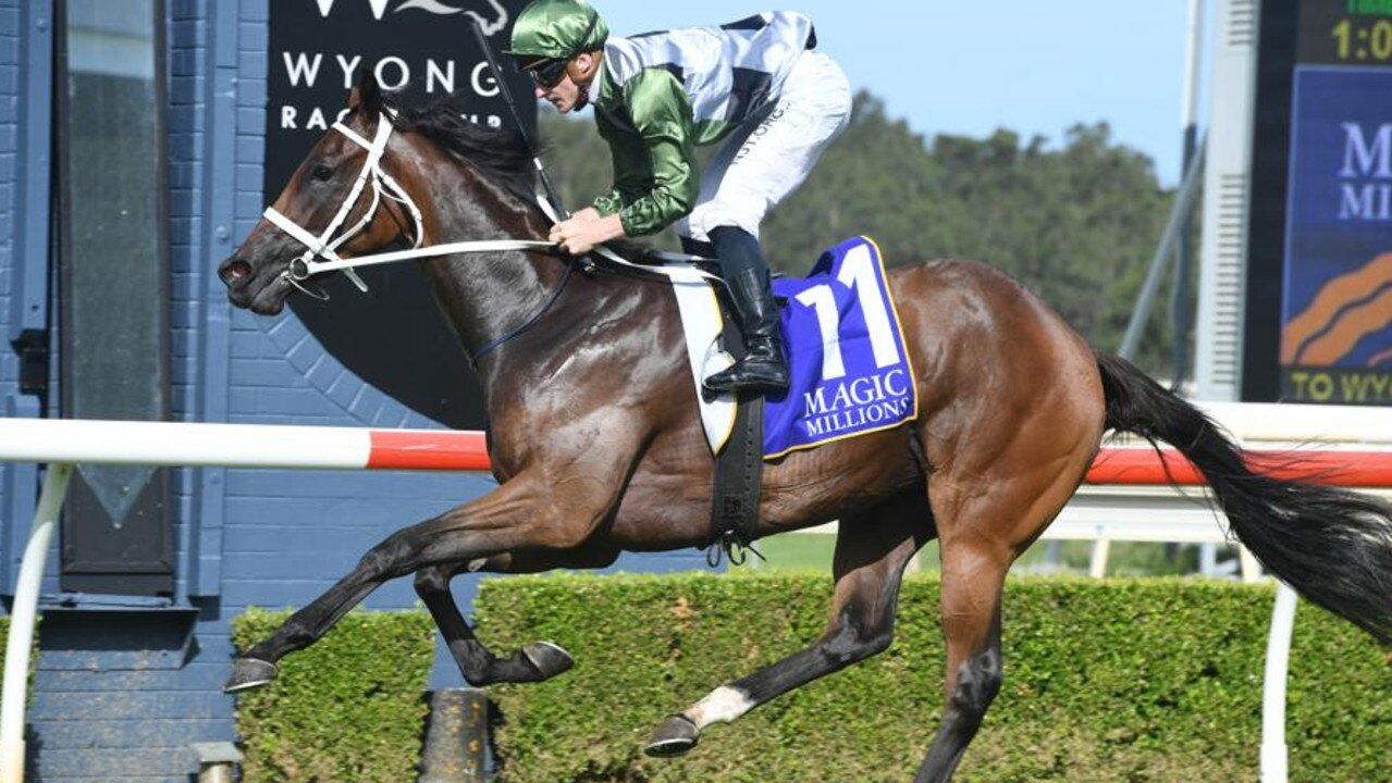 She's All Class winning the Wyong Magic Millions. Picture: Steve Hart Photographics