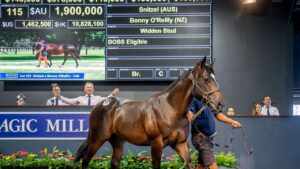 Lot 115 by Snitzel sells for $1.9 million at the Gold Coast sales.