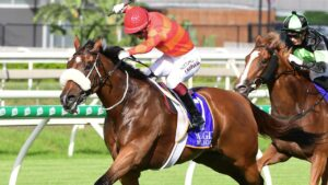 Apache Chase hung on to win the Vo Rogue Plate at Eagle Farm. Picture: Trackside Photography