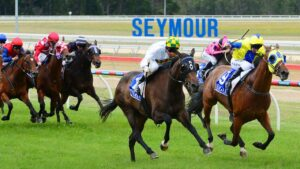 There'll be no racing at Seymour in the forseeable future. Picture: Zoe Phillips