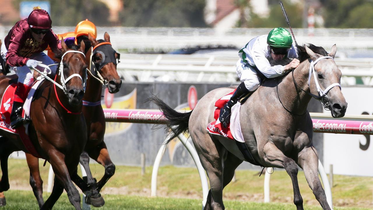 Terbium was back to his best at Gawler on Saturday