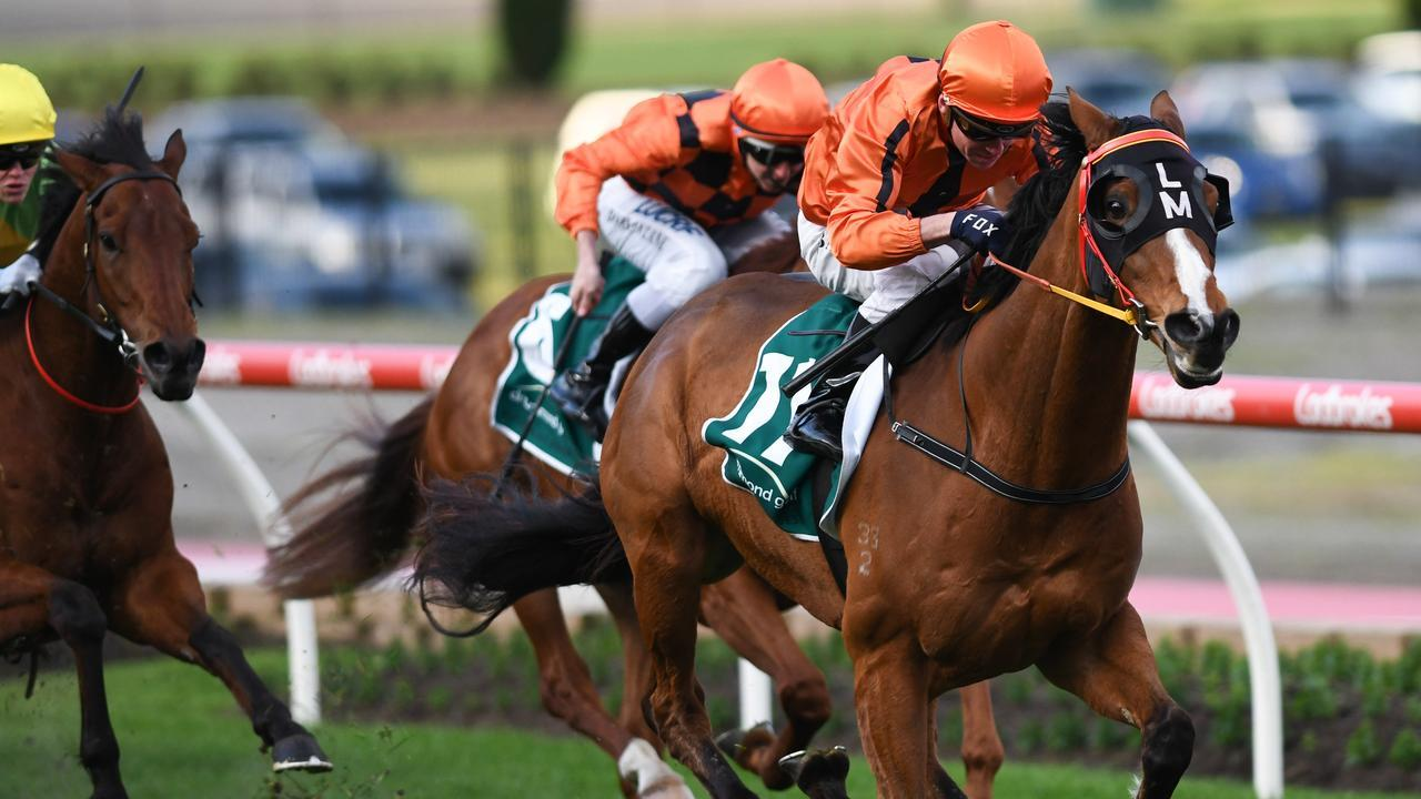 Gold Fields has won at The Valley — the venue of next year's All-Star Mile.