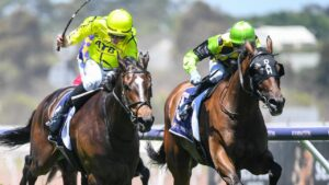 Racing Victoria's whip reform a hot button topic between participants.
