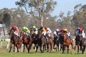 Gunnedah looks an ideal venue for a couple of maiden gallopers to break their duck