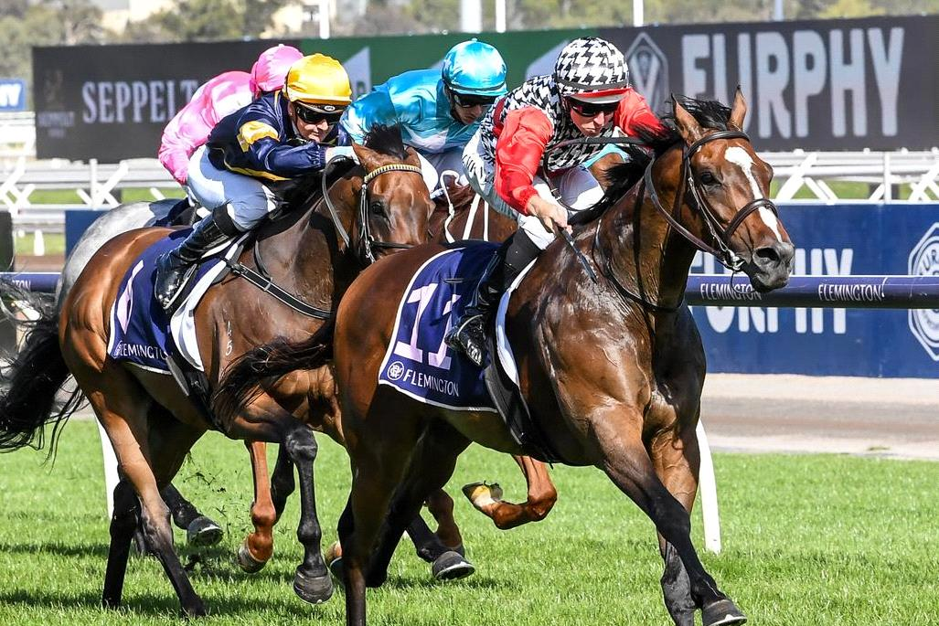 This one was over a long way out to bring up a treble for Damian Lane.