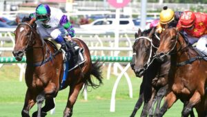 Alpine Edge secured his spot in the Magic Millions Classic with victory in the Phelan Ready Stakes. Picture: Grant Peters