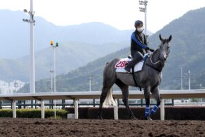 Classique Legend takes it in at Sha Tin.