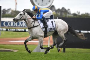 The good looking grey Frosty Rocks is our star bet.