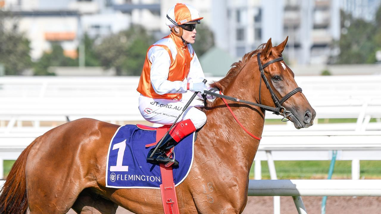 Vow And Declare will have a crack at a third Melbourne Cup. Picture: AAP