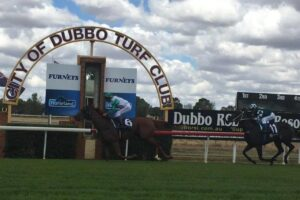 We have two specials at Dubbo on Tuesday