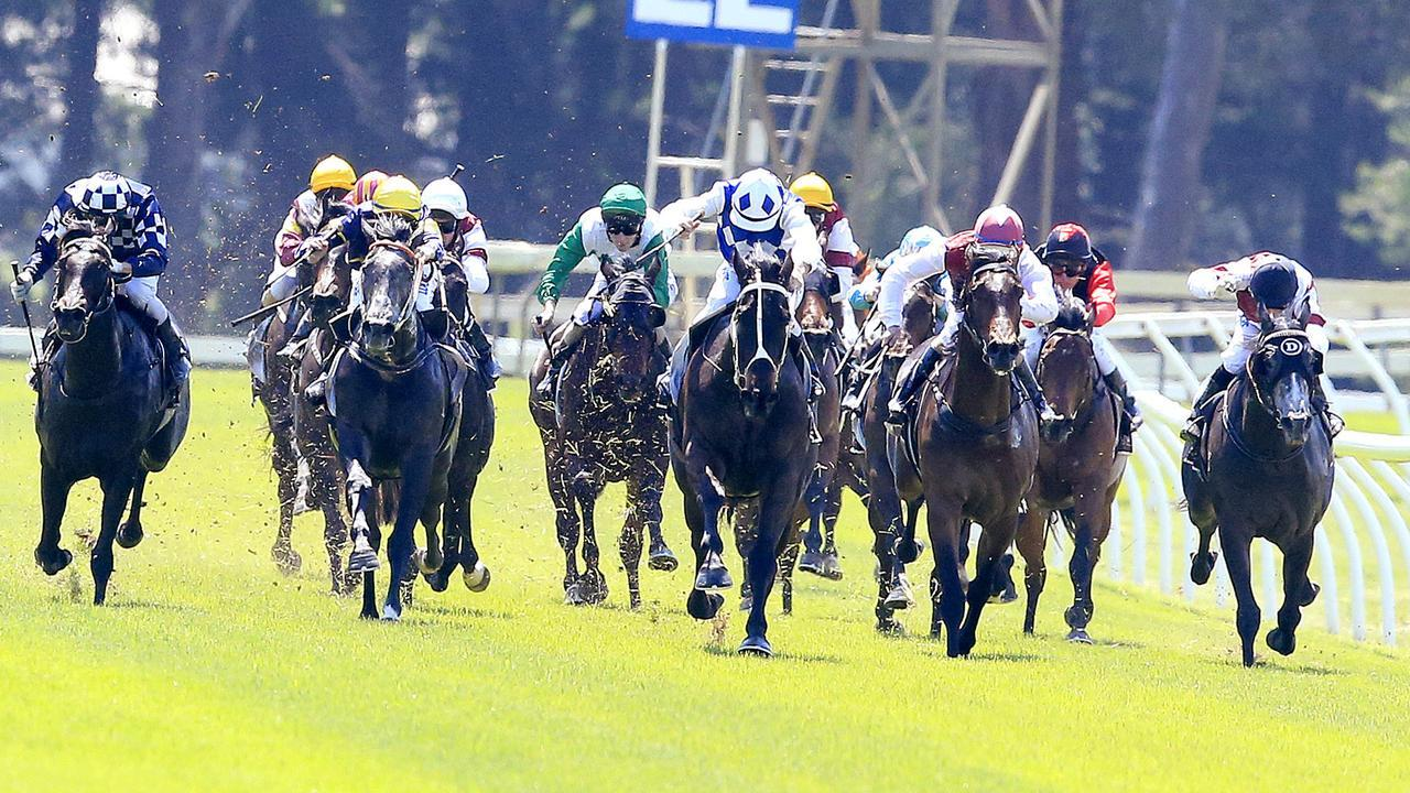 The Seymour racetrack is the subject of high-level discussions about its future.