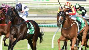 Hard Empire hunts down Jonker in the George Moore Stakes. Picture: Grant Peters/Trackside Photography