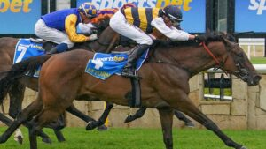 Attorney takes out the Pakenham Cup after a superbly judged ride by Nash Rawiller.