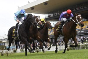 Oscar Zulu (red cap) gets the nod in what should prove a solid form race.