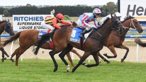 Enigman has found form having travelled more than 11