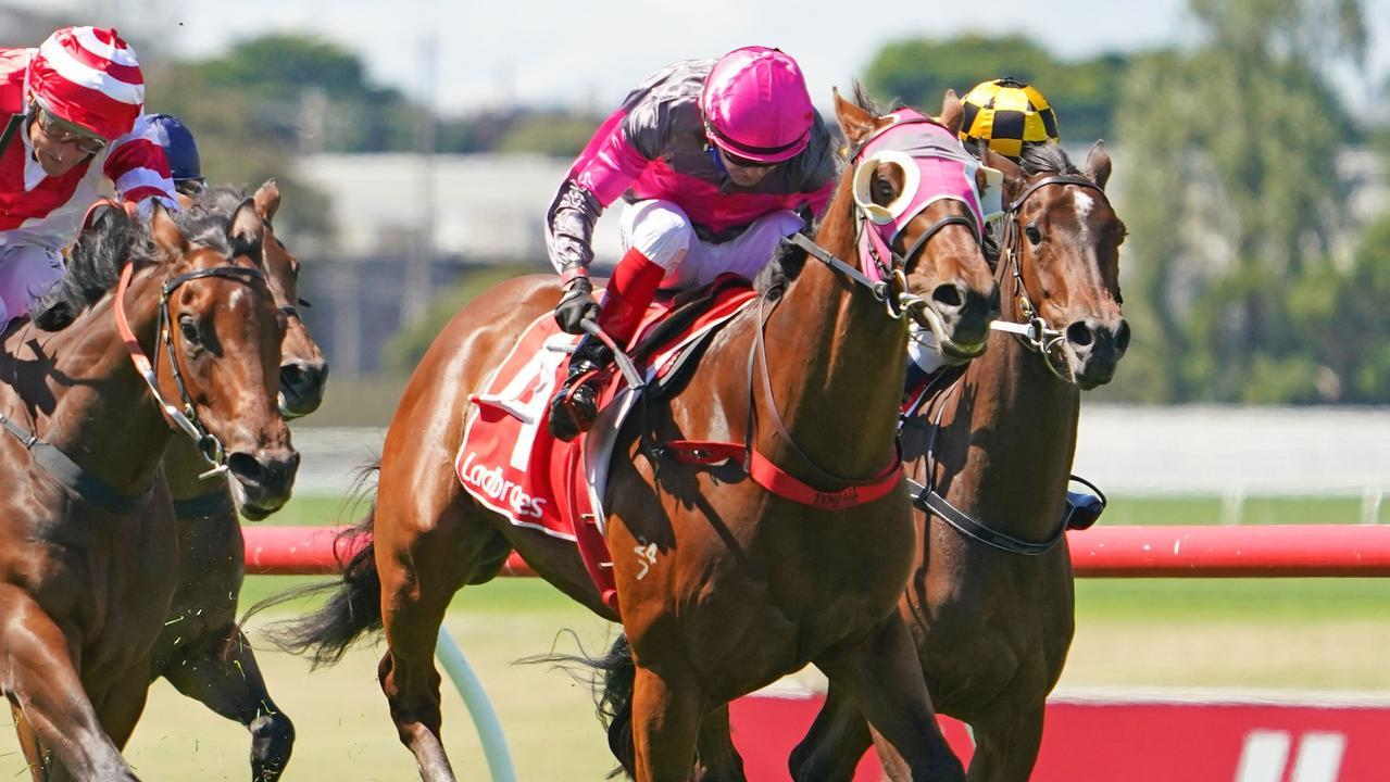 Allibor ridden by Dean Yendall wins the Ladbrokes Sandown Guineas at Ladbrokes Park Hillside Racecourse before his sale to Hong Kong interests. Photo: Scott Barbour/Racing Photos via Getty Images.