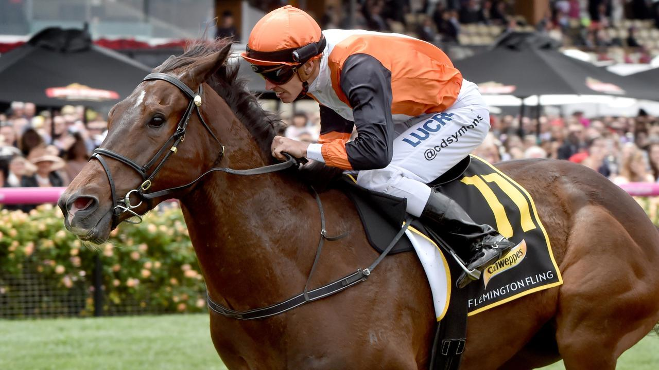 The Ellerton-Zahra stable is looking towards The Valley for Flemington straight-track specialist Prezado. Picture: Jay Town