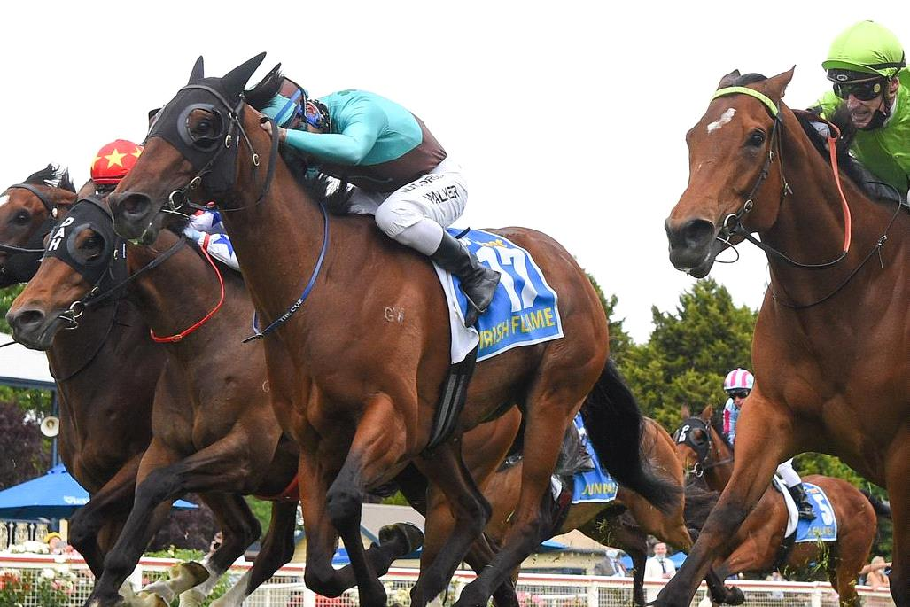 As tough a win as you will see by Irish Flame to take out the feature Ballarat Cup.