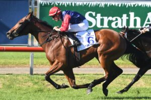 Sweet Deal races to victory in The Hunter.