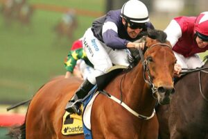 This deeds of this former star Zipping will be recognized at Sandown on Saturday.