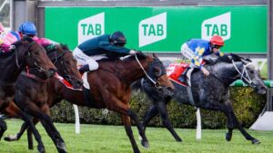 The TAB will be back in full swing at Morphettville on Monday for 'part two' of Saturday's meeting. Photo: Brenton Edwards