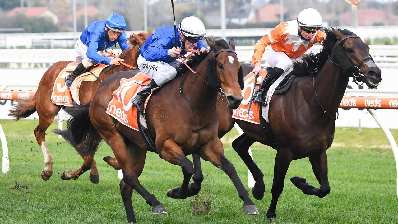 The Pro Punter is keen on Savatiano at Rosehill. Pat Scala/Racing Photos via Getty Images