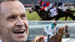 Chris Waller has two big chances in the Melbourne Cup.