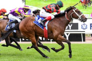 September Run was superior down the straight in the Coolmore Stud Stakes.