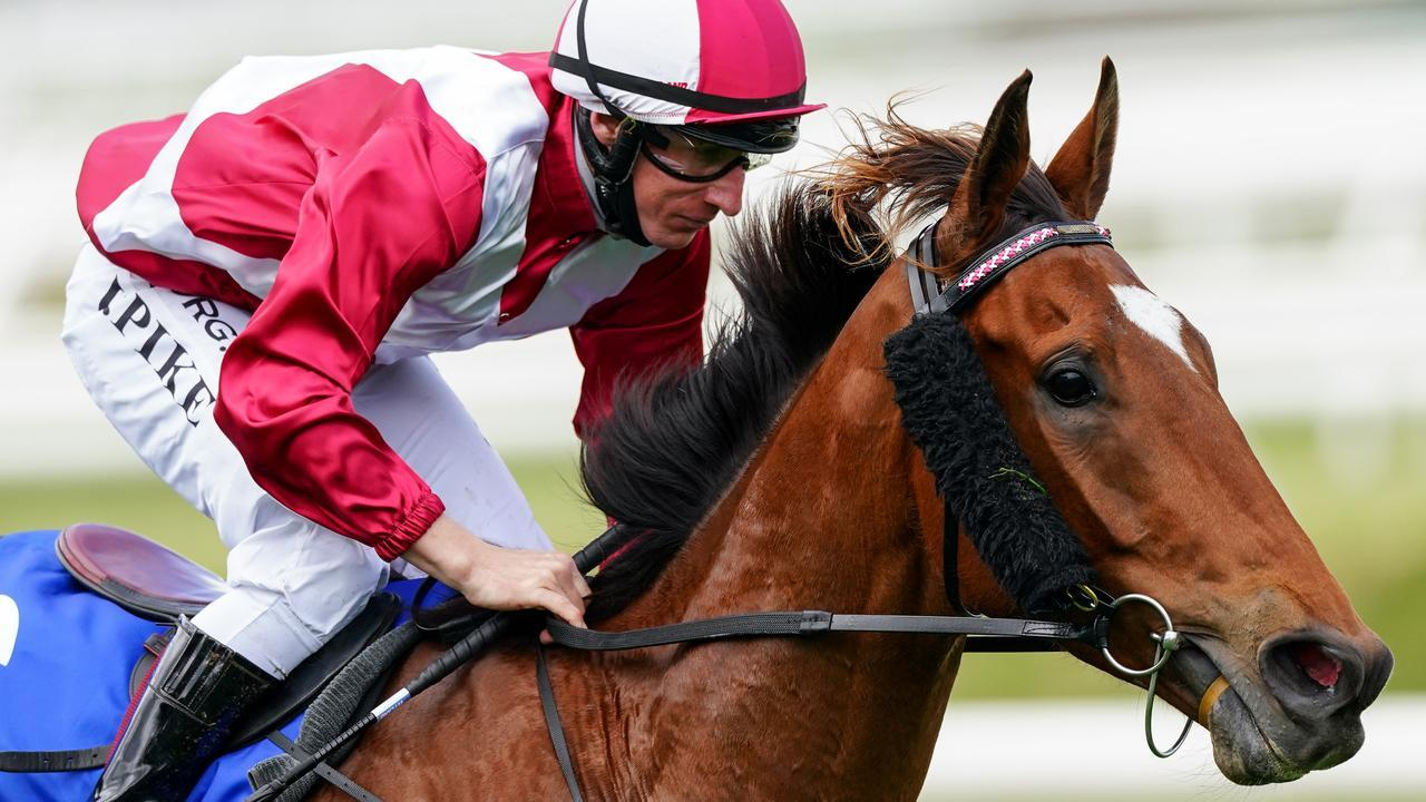 Windstorm ridden by William Pike wins the The Big Screen Company Weekend Hussler at Caulfield Racecourse on October 10