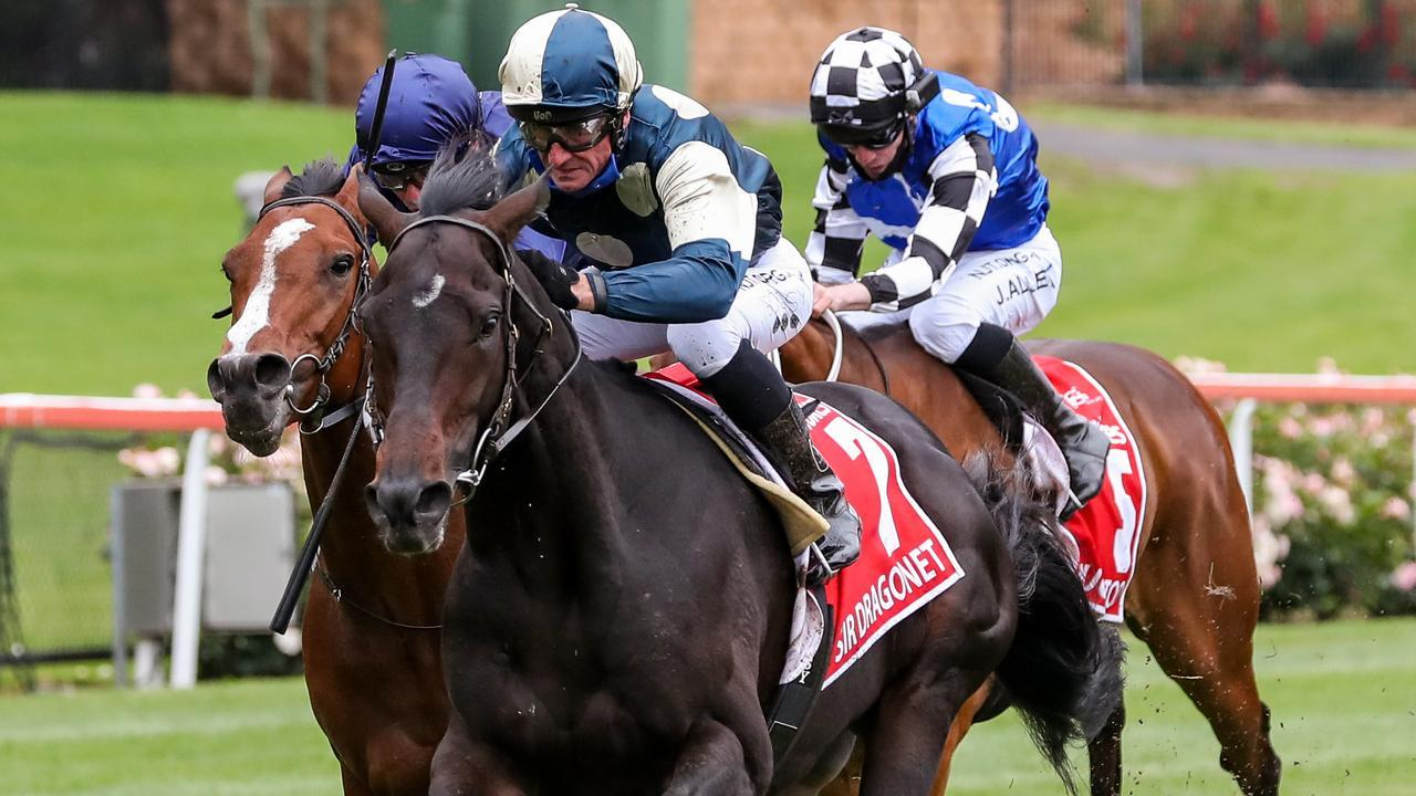 Sir Dragonet scored an impressive win in the Cox Plate. Picture: Getty Images