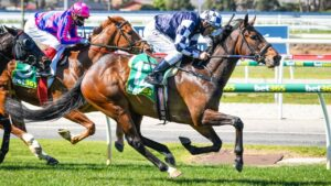 Young Werther under Damien Oliver easily wins at Geelong on debut.