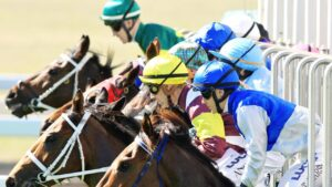 Thoroughbred action heads to Muswellbrook in NSW on Monday.