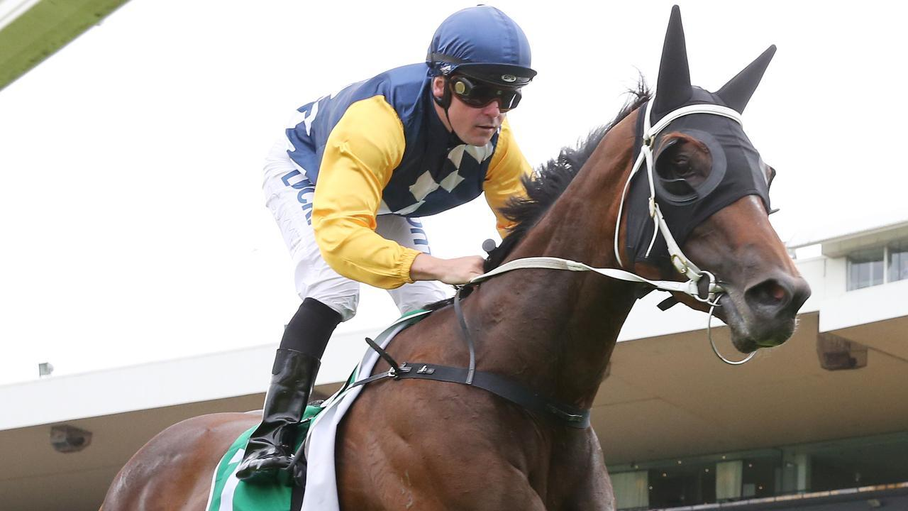 Shaun Guymer will ride Boom And Zoom at Nowra. Picture: Getty Images