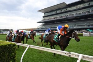 Think It Over saluted in the Craven Plate