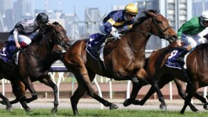 Aktau has been forced out of the Caulfield Cup. Photo: George Salpigtidis/Getty Images