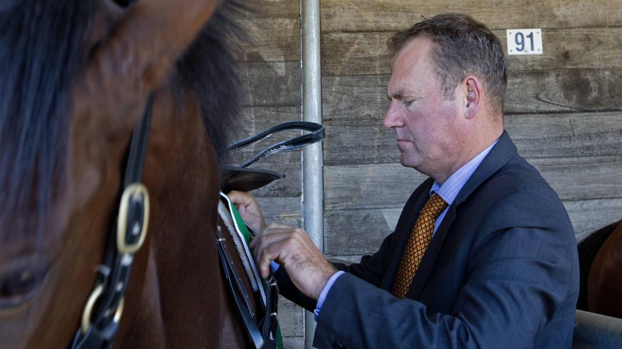 Trainer Rodney Northam saddles up his horse during Scone Races located in the Upper Hunter Region of NSW. Pic Jenny Evans