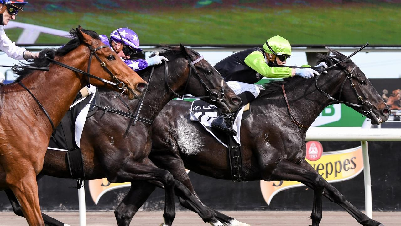 Persan is in the Melbourne Cup after winning the Bart Cummings at Flemington. Picture: Getty Images
