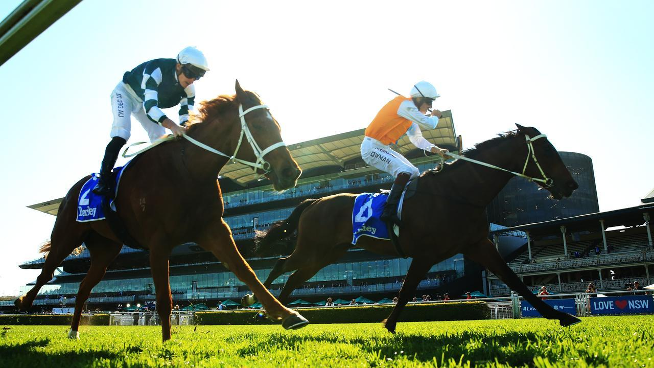Hugh Bowman drives Montefilia home over the top of Hungry Heart to win the Flight Stakes. Photo: Getty Images