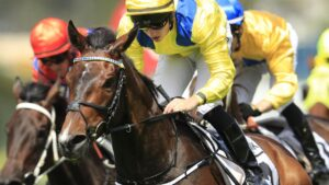 Young Rascal will race on a firm track but trainer Archie Alexander said the stayer would improve with a change of tactics in Saturday's Group 3 Bart Cummings.